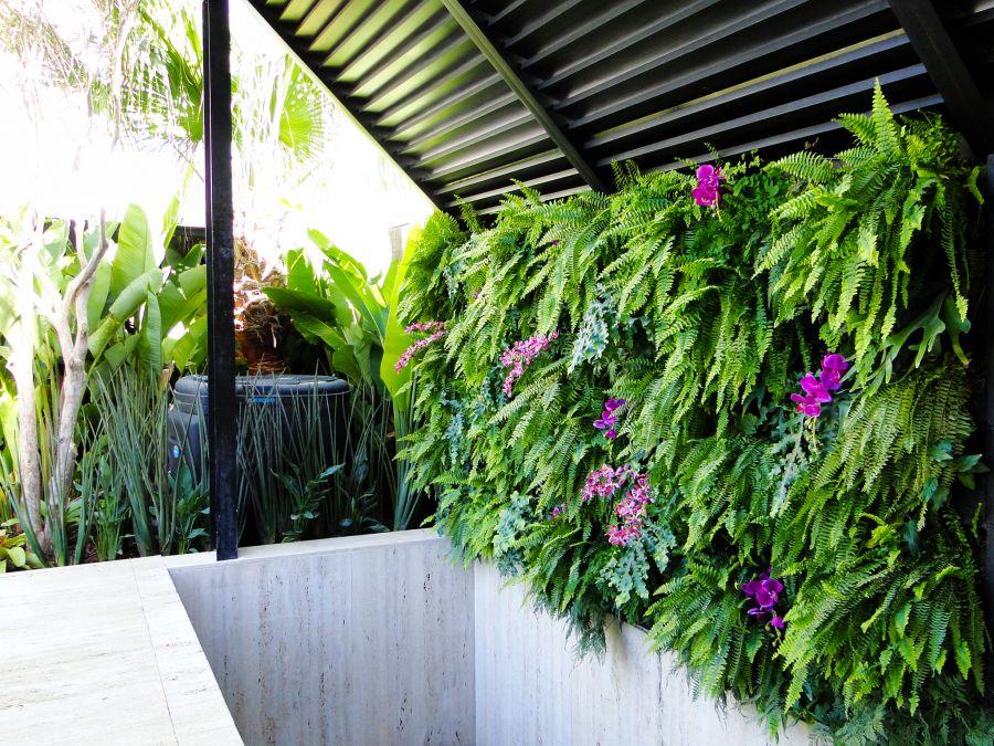 Paredes vegetadas: como escolher a sua