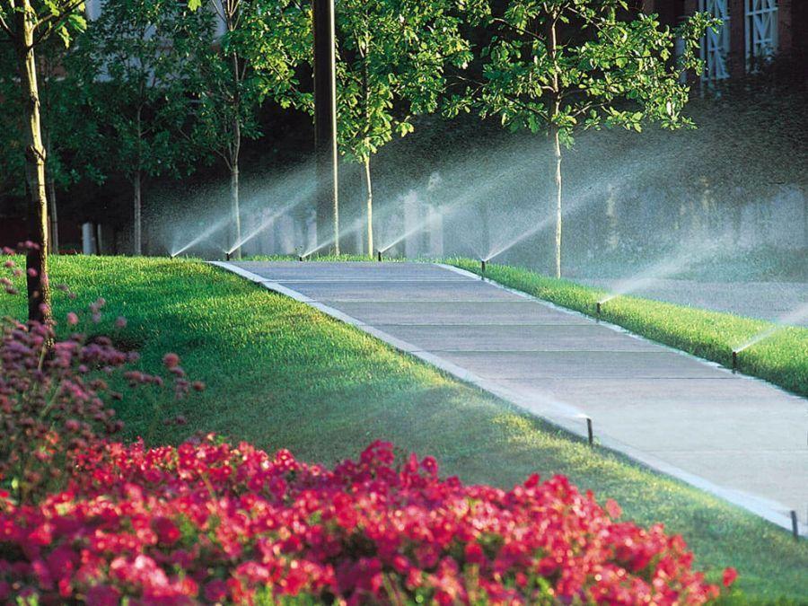 Guia básico: Entenda como funcionam os sistemas de irrigação automática