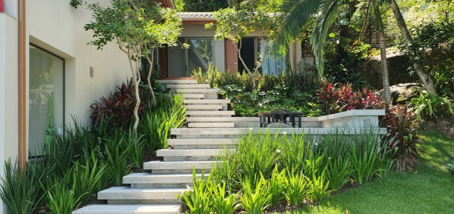 Qual o melhor horário para regar o seu jardim?